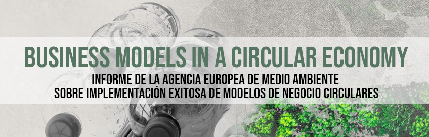 Business Models in a Circular Economy