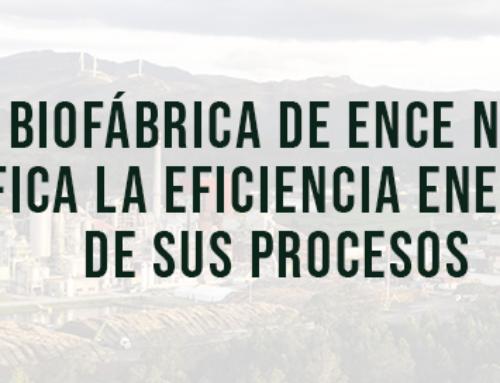 La biofábrica de Ence Navia certifica la eficiencia energética de sus procesos
