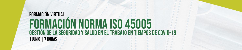 Formación Norma ISO 45005 - Gestión de la seguridad y salud en el trabajo en tiempos de COVID-19